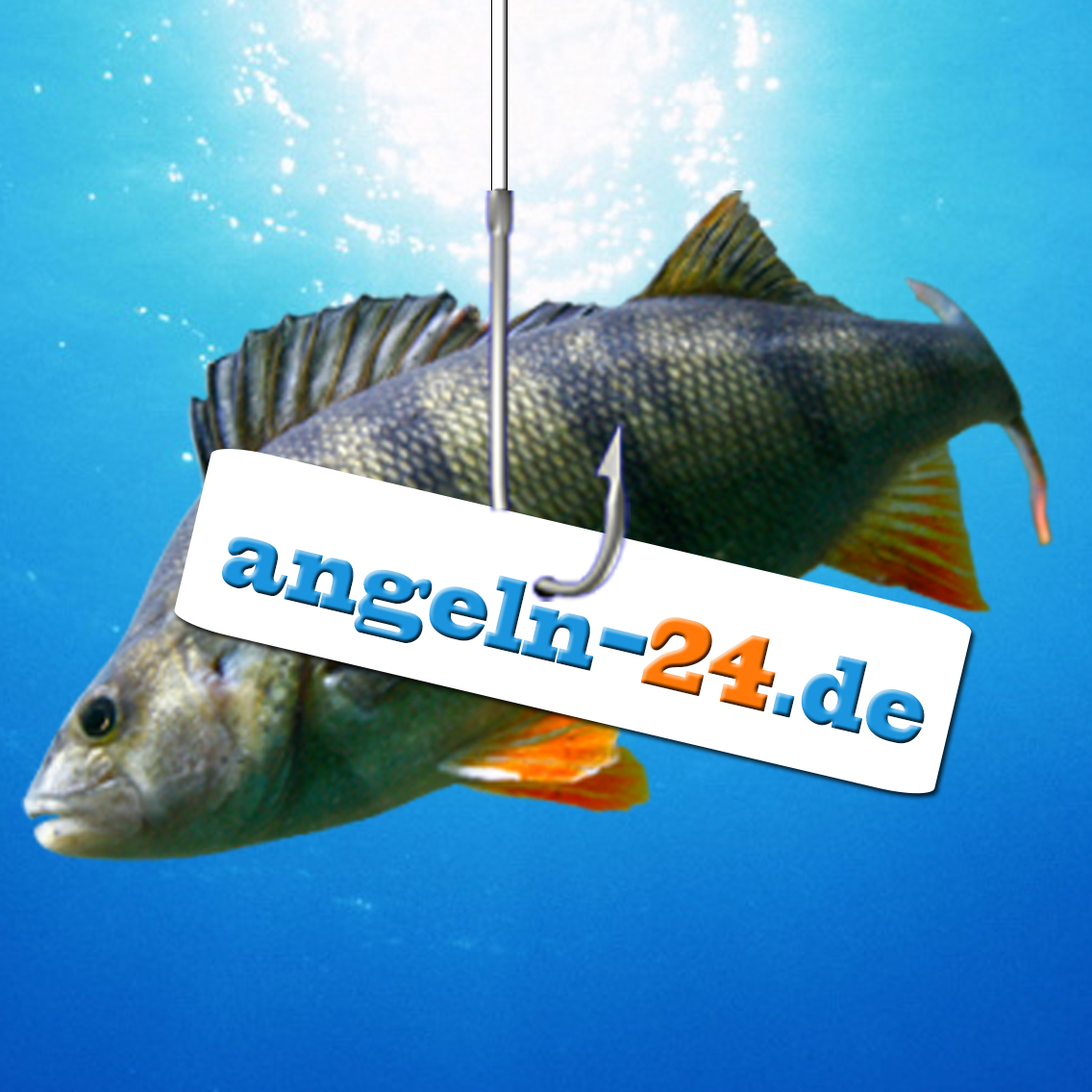 Angeln-24 Webautor Icon