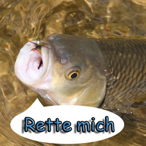 rettemich