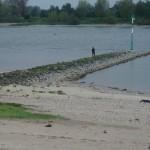 Rhein bei Köln Worringen